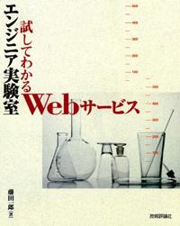 book_tameshitewakaruwebservice.jpg