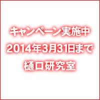 lesson_campaign_01.jpg